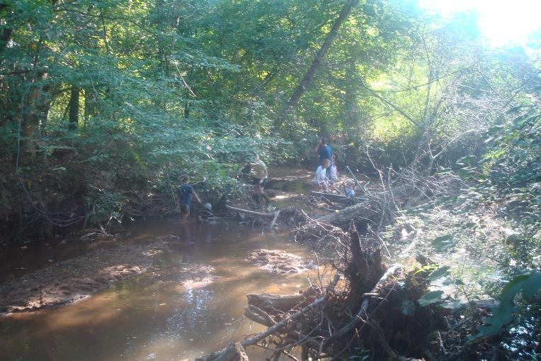 Reed Creek
