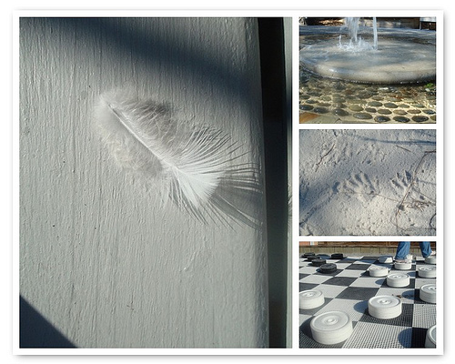 Feather, fountain, footprint, fun with checkers