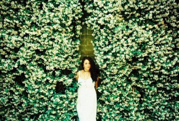 Jasmine wall