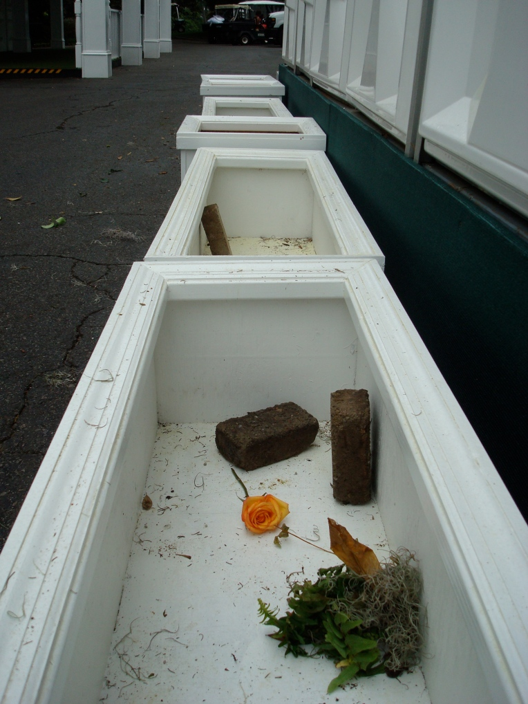barren flower boxes ... remnants of the excitement