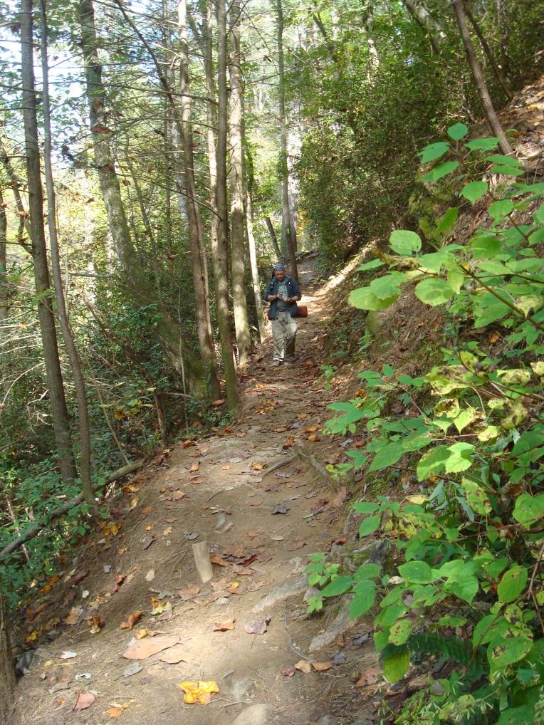 Panther Creek Hiking Trail, Clarkesville, GA