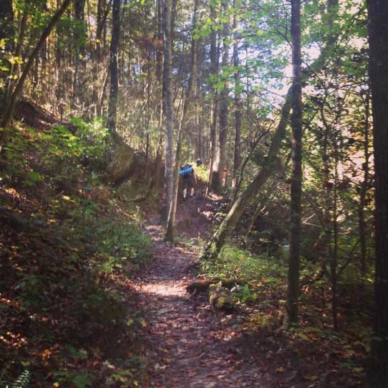 Panther Creek Trail along Panther Creek in Clarkesville, GA