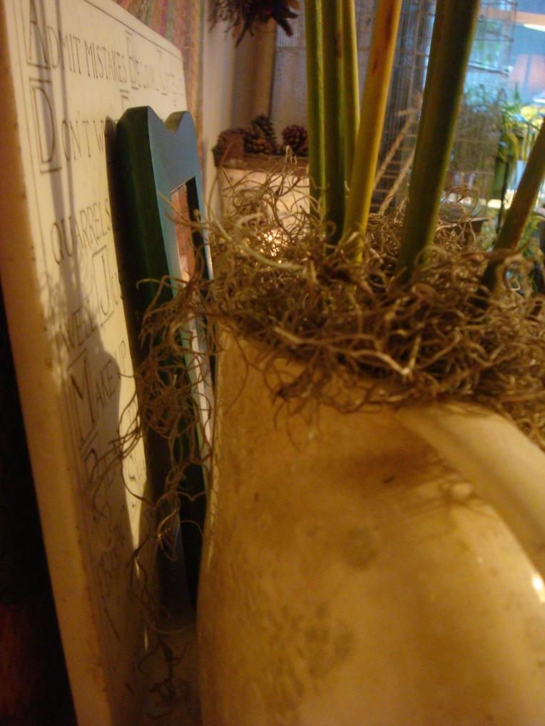 Cattails in vintage pitcher