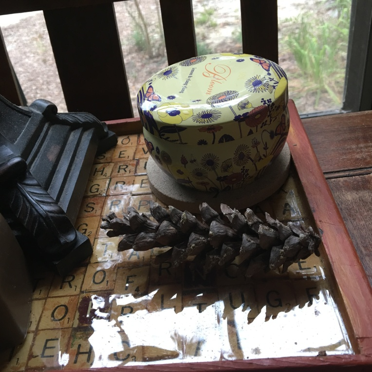 Pinecone on the dinner table